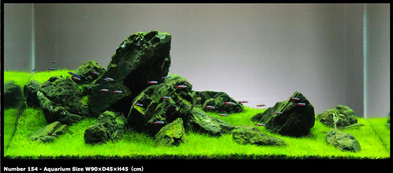 Popular themes miyabi aqua design for Landscaping rocks for aquarium