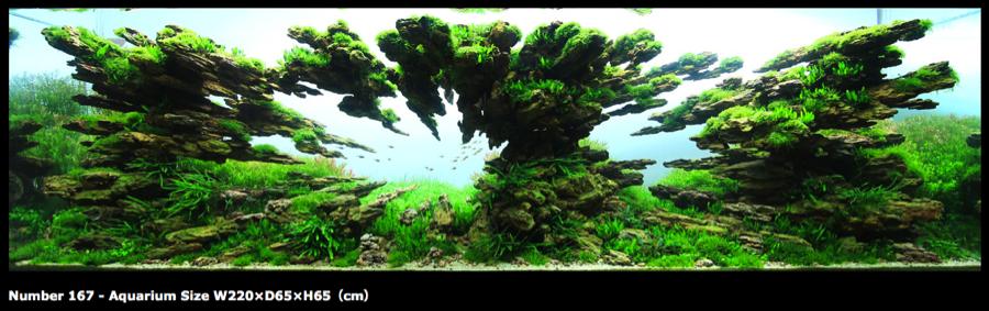 Popular themes miyabi aqua design Aquarium landscape
